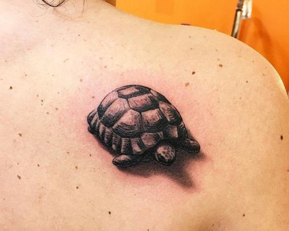 Animal tattoos to express your individuality for Little turtle tattoo