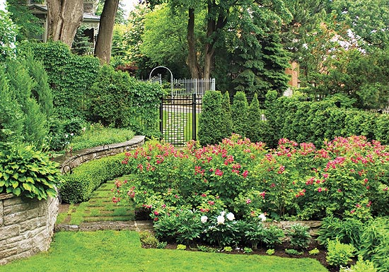 Top Tips to Prepare for the Perfect Garden